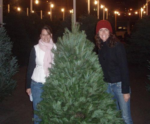 wendy-tree